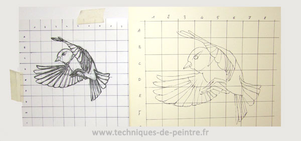 dessin-oiseau-quadrillage