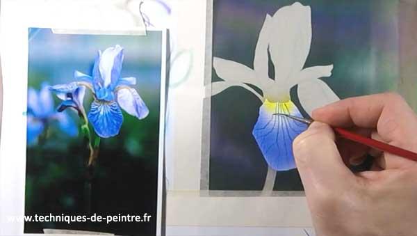 comment peindre une fleur d iris l a rographe techniques de peintre. Black Bedroom Furniture Sets. Home Design Ideas